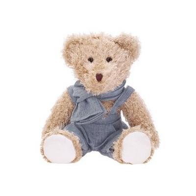 Teddy bear in a blue jumpsuit